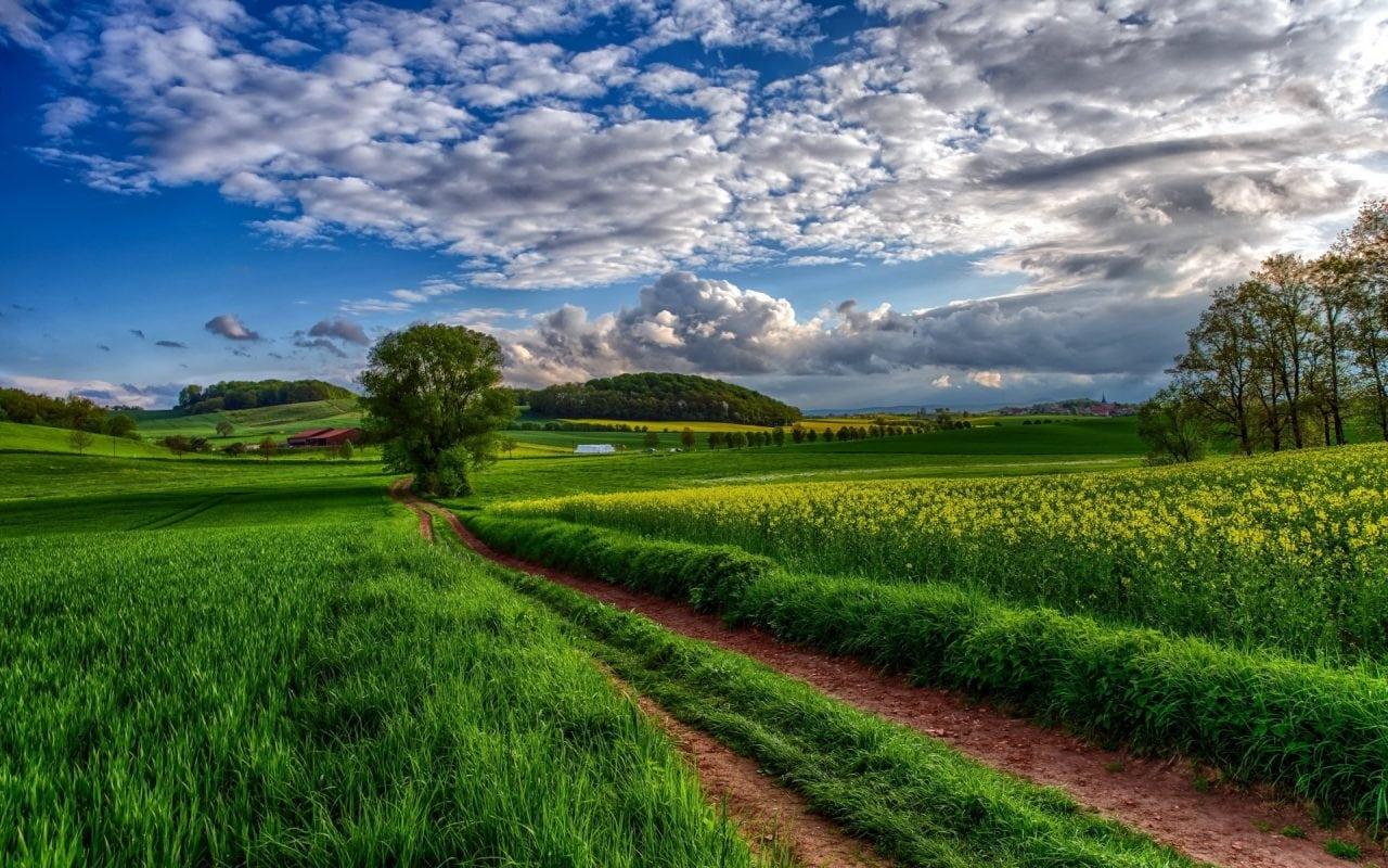 Across the field - Eduard Uzunov: Stocul de terenuri bune este aproape epuizat