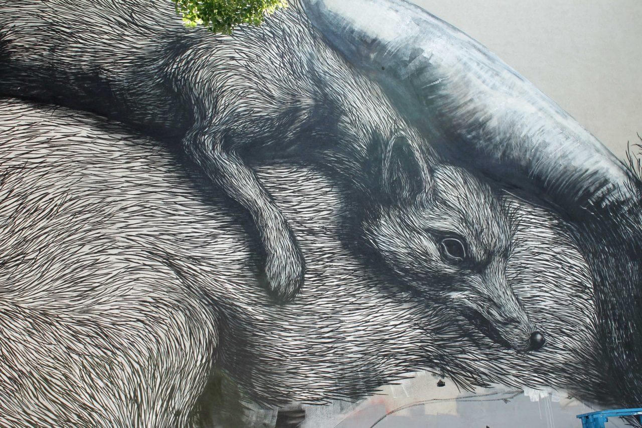 puber - Street Art: Noua fata a oraselor