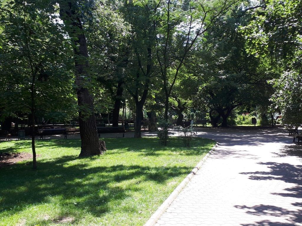 20180805 130936 1024x768 - Parcul Ioanid, un monument istoric cu personalitate puternică