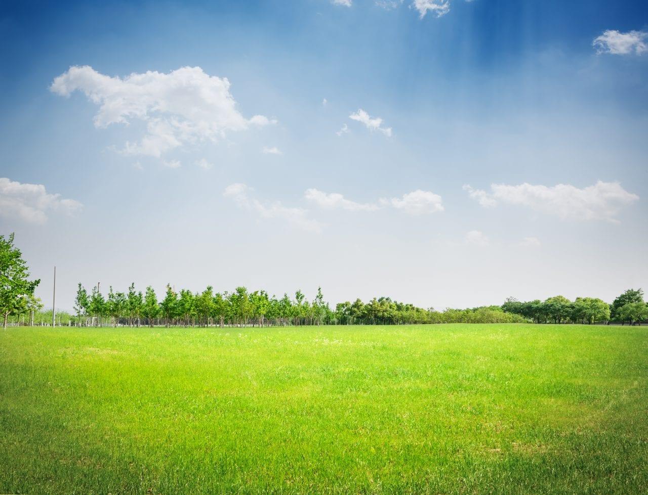 teren - Prețurile terenurilor, ușoară creștere în 2018; tranzacții dublate la 140 hectare