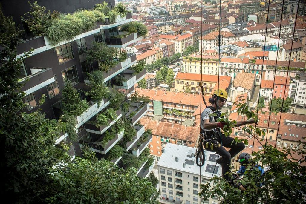 Bosco Verticale 1024x683 - Pădurea Verticală (Bosco Verticale) din Milano – inovație în sectorul rezidențial