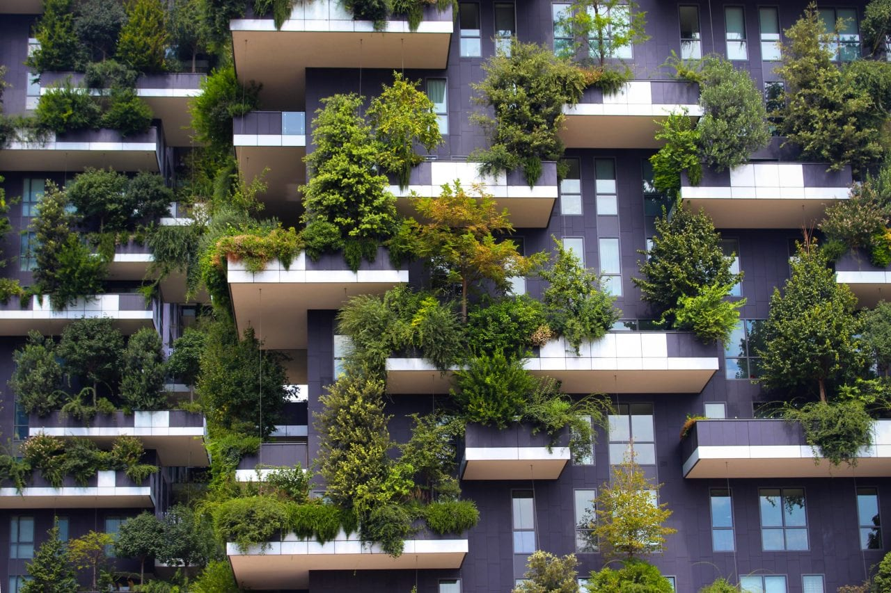 bosco verticale 2 - Pădurea Verticală (Bosco Verticale) din Milano – inovație în sectorul rezidențial