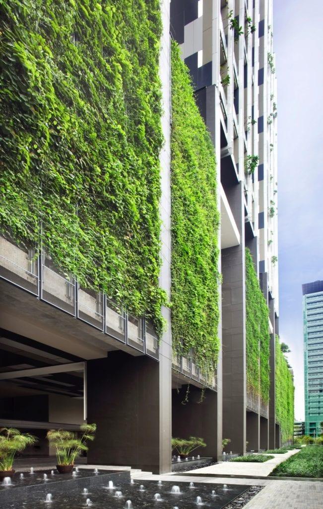 proiecte verzi 3 651x1024 - Clădirile viitorului – mai aproape de natură