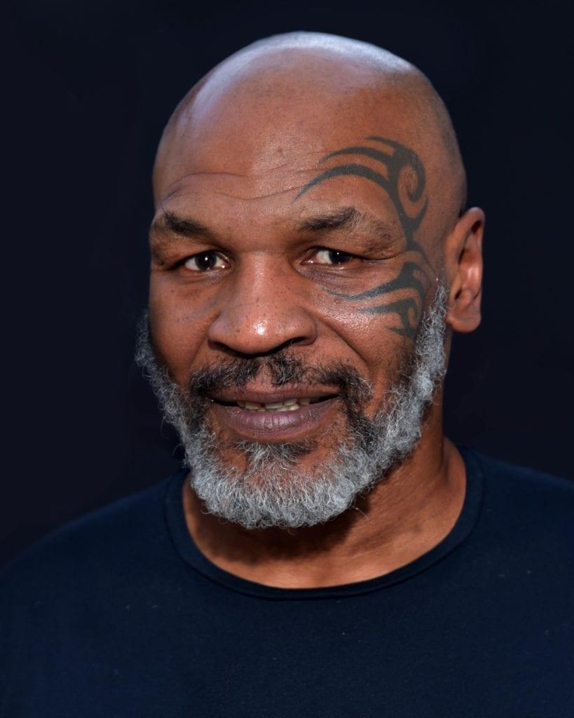 Mike Tyson 2019 by Glenn Francis copy 819x1024 - 7 reşedinţe ale celebrităților, abandonate sau scoase la vânzare